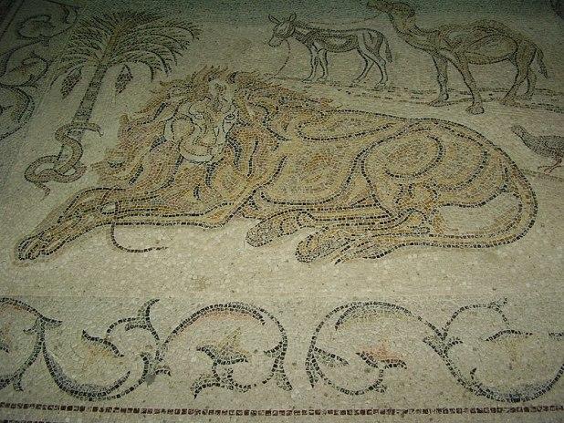 פסיפס האריה של גרסימוס בכנסיית דיר חג'לה צילום: אבישי טייכר