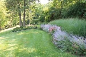 Perennials2 reduced