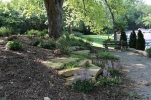shade garden 2 reduced