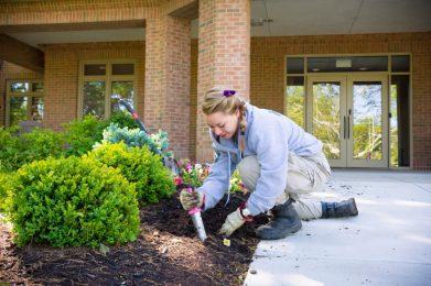 Volunteer gardens on Ohio's Hospice of Dayton campus.