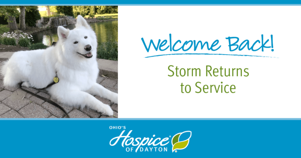 Welcome Back! Storm Returns to Service - Ohio's Hospice of Dayton