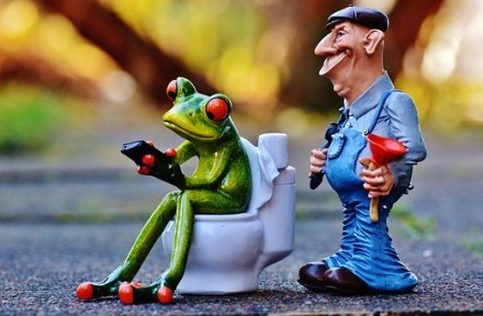 Frog on toilet and plumber