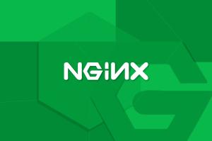 ¿Qué-es-NGINX--Una-mirada-básica-a-lo-que-es-y-cómo-funciona?