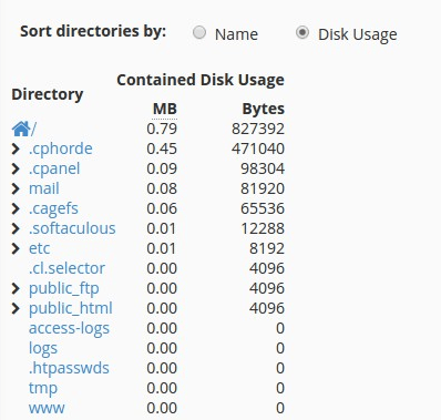 Disk Usage cPanel