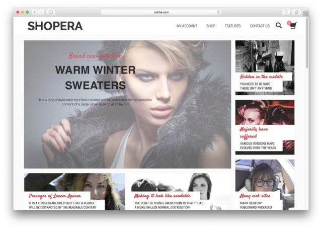 Demo page of the Shopera theme.