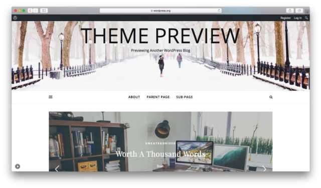 Preview the Free WordPress Ashe theme