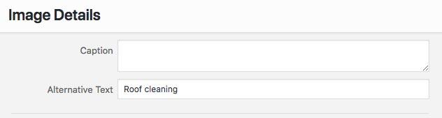 Setting Alt Tag in WordPress