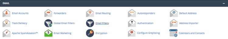 cPanel email management features