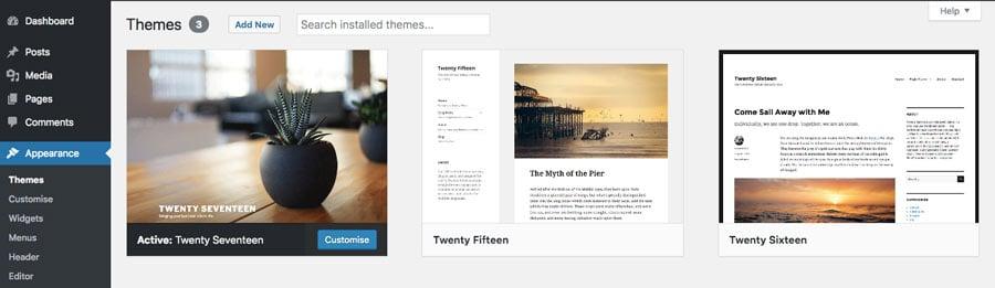 WordPress appearance menu