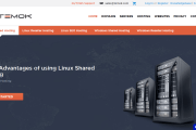 Temok Hosting Review : Best Hosting Provider