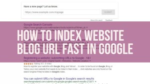 How to Index website blog url fast in google