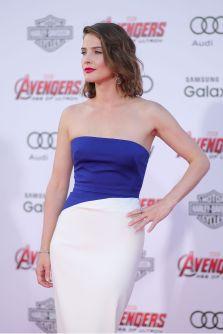 Cobie Smulders (2)