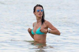 Alessandra Ambrosio (23)