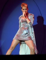 Katy Perry Legs Panties (21)