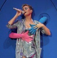 Katy Perry Legs Panties (30)