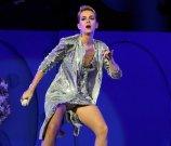 Katy Perry Legs Panties (9)
