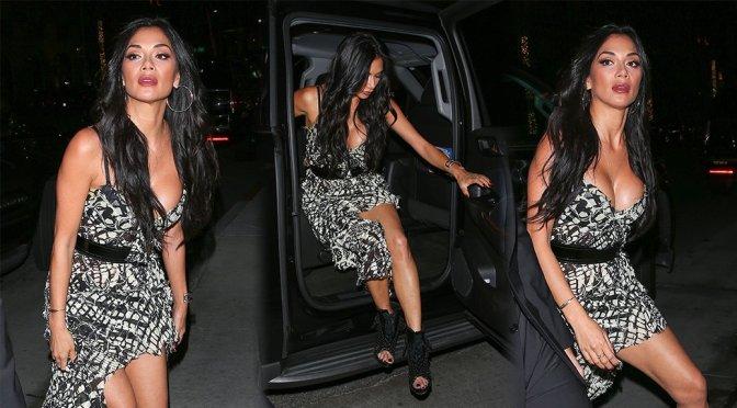 Nicole Scherzinger Boobs Legs