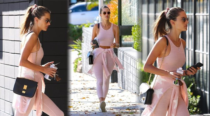 Alessandra Ambrosio – Candids in Los Angeles