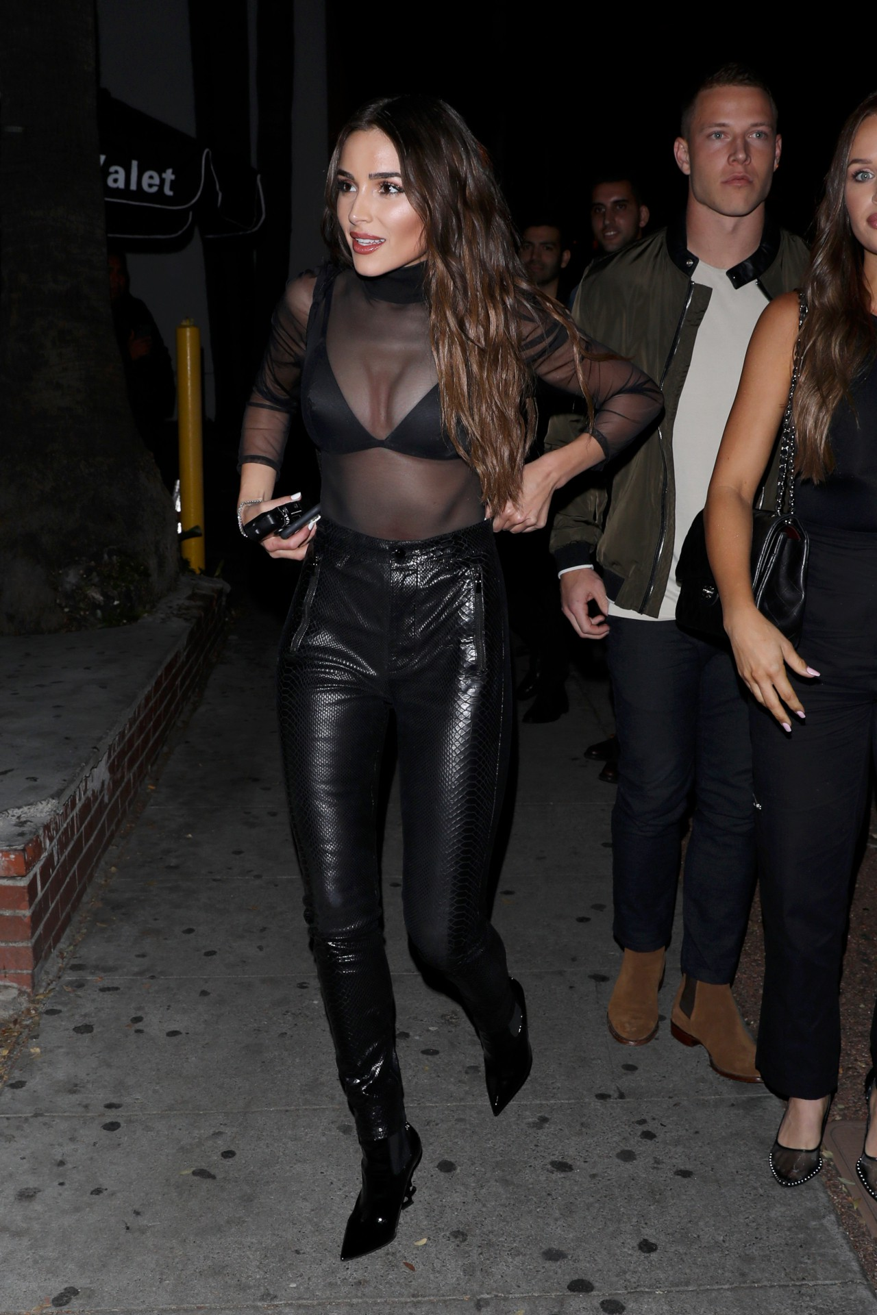 Olivia Culpo See Through Top