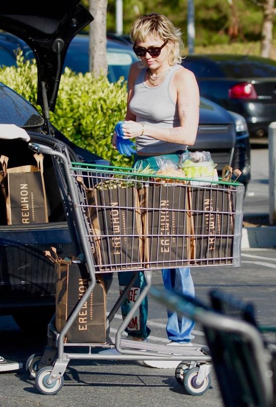 Miley Cyrus Braless Breasts