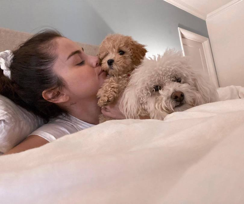 Selena Gomez Cute With Dogs