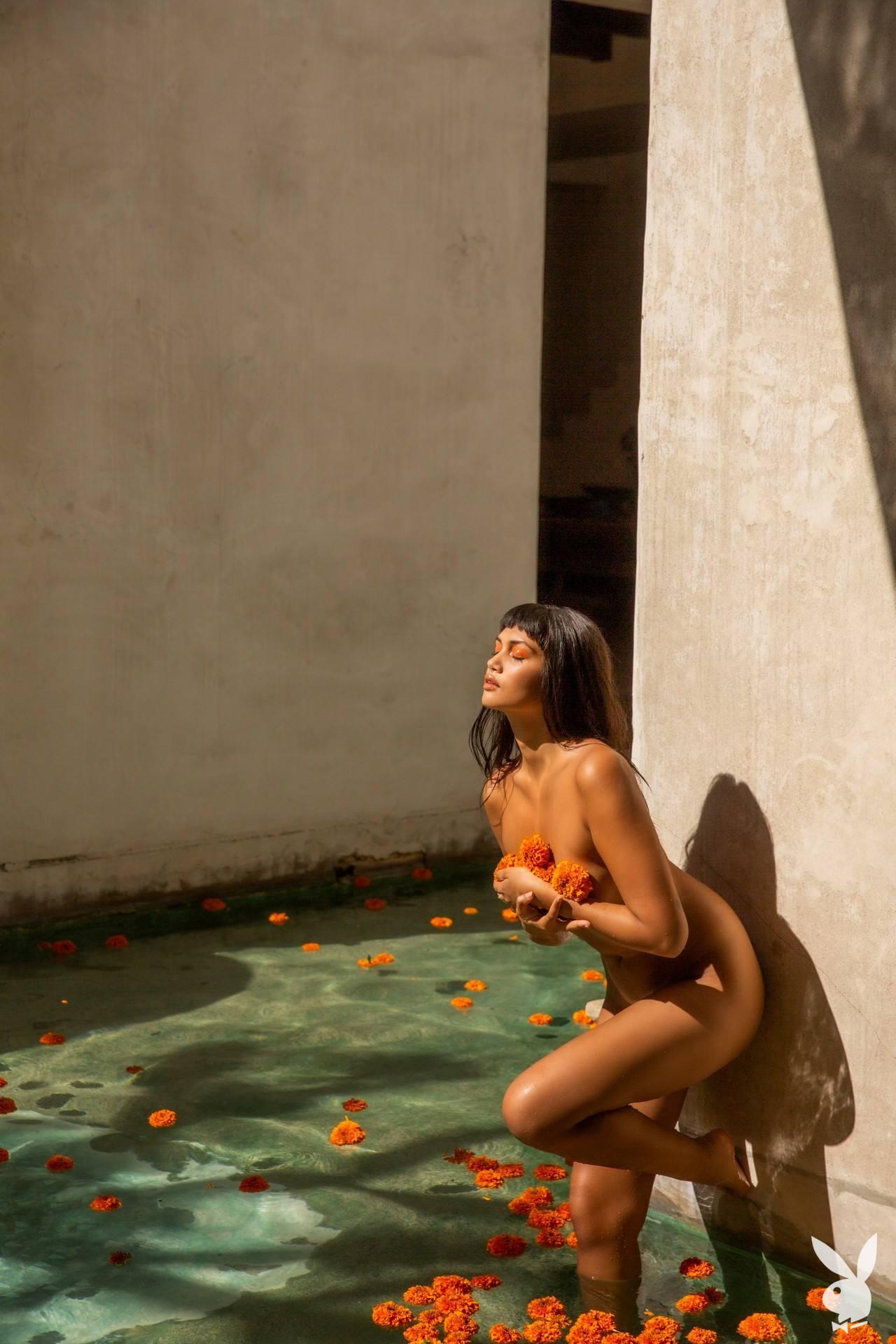 Anita Pathammavong Naked