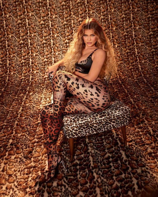 Kylie Jenner Tiger Print Fishnet