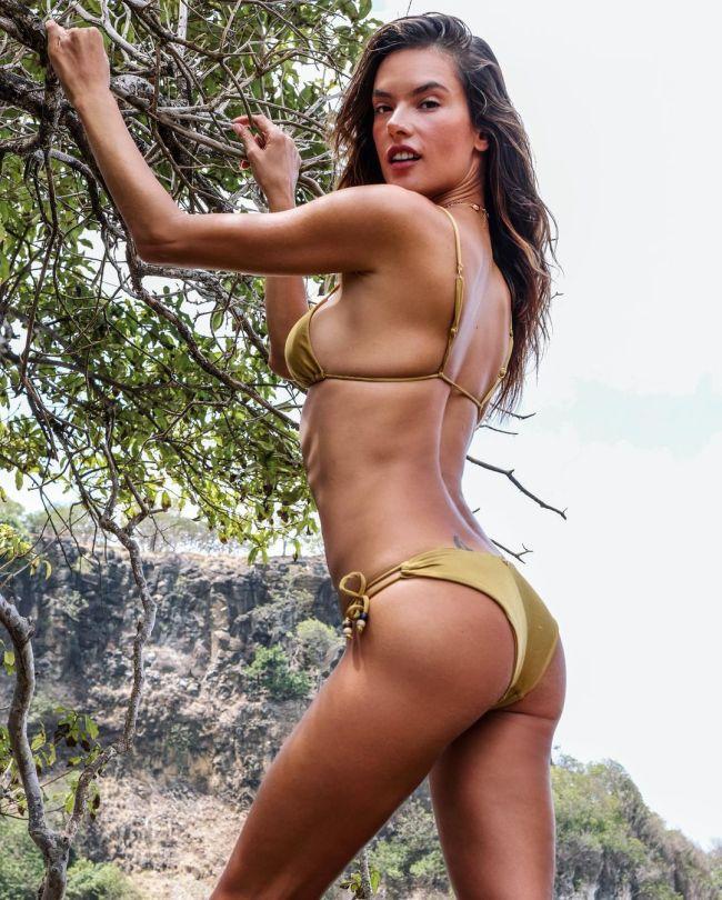 Alessandra Ambrosio Hot Ass In Bikini