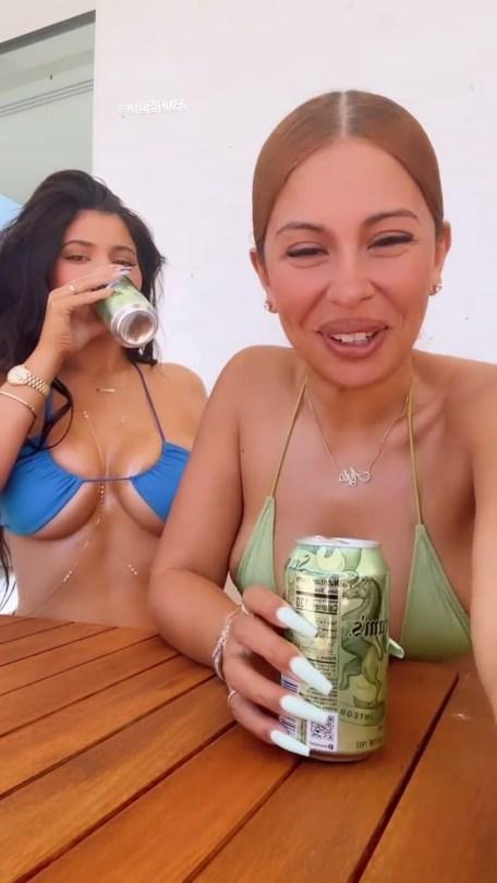 Kylie Jenner Fantastic Boobs