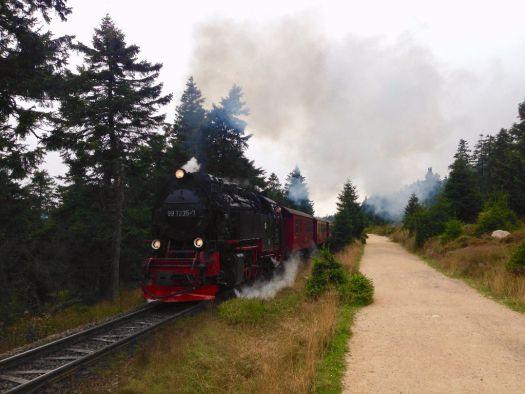 Harzer Schmalspurbahn auf dem Weg zum Brocken (Harz)