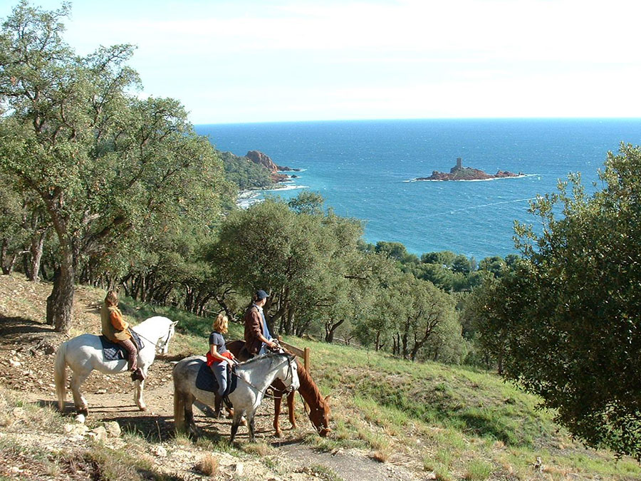Hôtel Le Virevent Saint Rapahaël - Poney Club