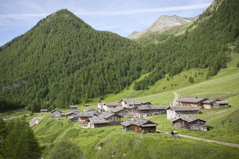 Image result for südtirol farm