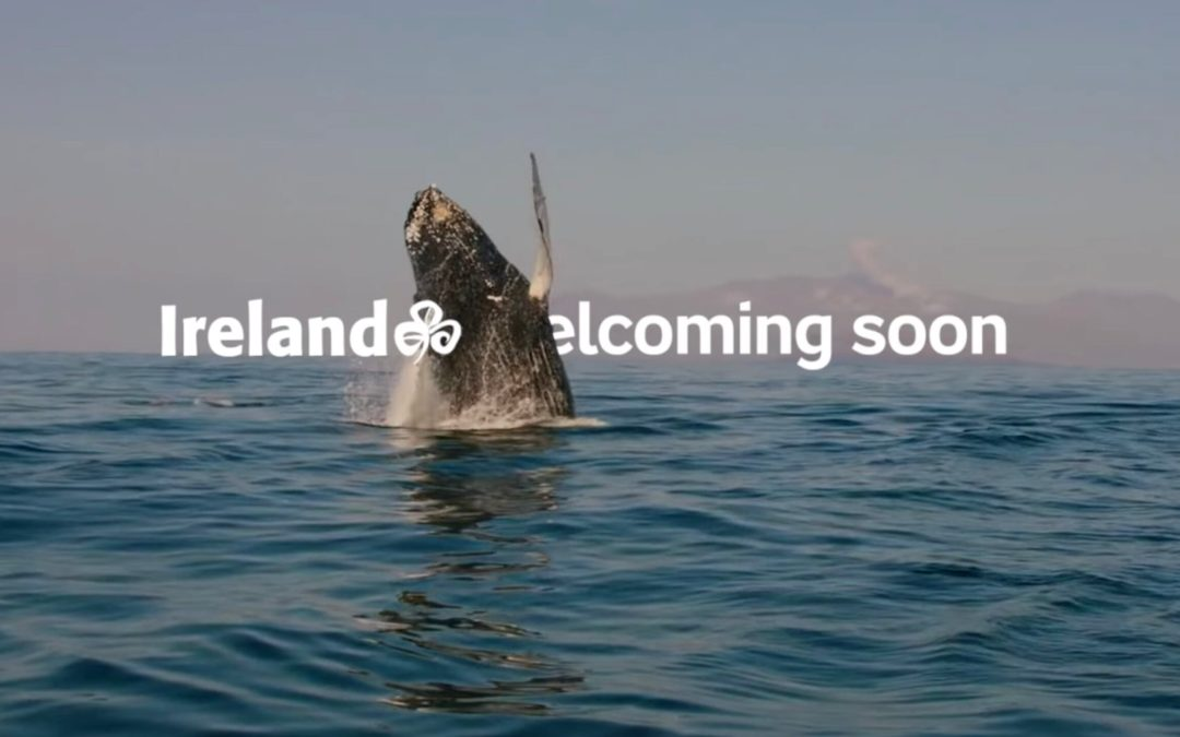 New Tourism Ireland film showcases our spectacular 'Noises of Nature'
