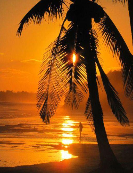Costalegre's Sunset