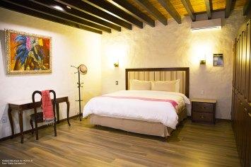 Hoteles-Boutique-en-México-Hotel-Casa-Dos-Leones-4