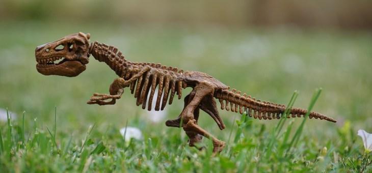 Experiencia entre Dinosaurios y Asturcones para niños