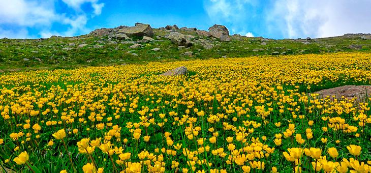Asturias en primavera
