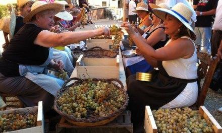 Fiesta del Moscatel. Benicasim