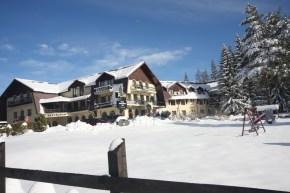 Hotel Ruia Poiana Brasov