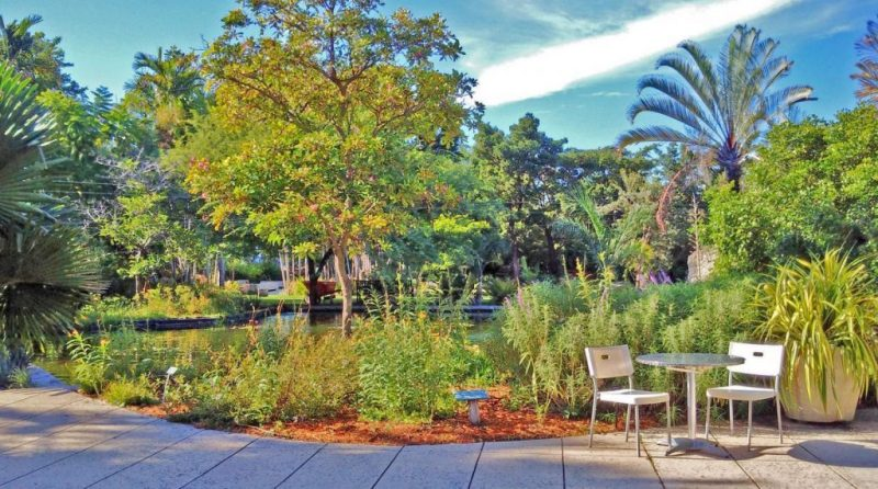 The Miami Beach Botanical Gardens are worth spending a day at whether you're a tourist or a local.