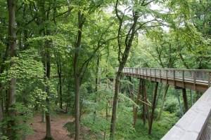 Hotel und Reisetipps für den Baumwipfelpfad Neuschönau