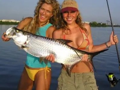 Girls fishing for tarpon in bikinis