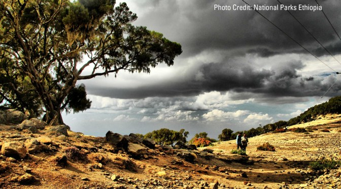 Science and Social Conflicts in Climate Planning: The View from Ethiopia