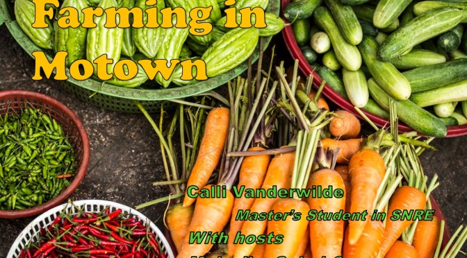 Farming in Motown