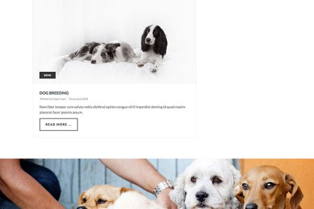 Dog Template   Joomla Templates   HotThemes     Template Screen Shot 8