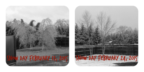 2015 Snow Day Collage Small