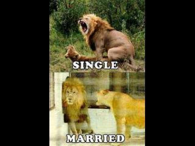 Kumpulan Meme Suami Suami Takut Istri Ini Gokil Dan Bikin Ketawa Hot Magazine