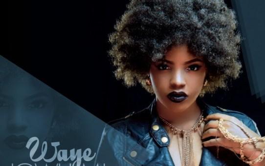Waye – Jowu Mi
