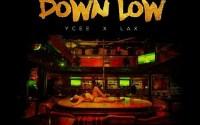 Down Low by Dammy Krane ft Ycee and L.A.X.