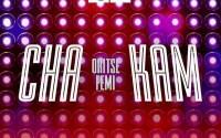 Oritse Femi - Cha Kam